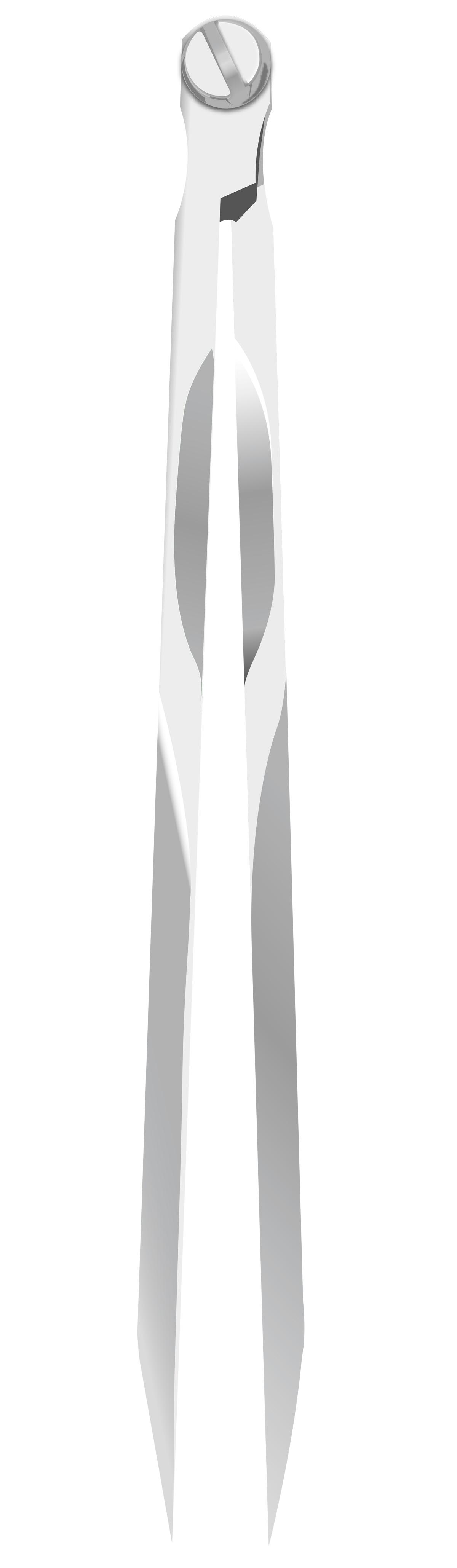 Illustrator Zeichnung eines Marinezirkel exakt nach Vorlage.
